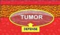Câncer: As Curas Proibidas