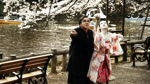 Hanami – Cerejeiras em Flor